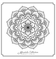 mandala decorative ornament design vector image vector image