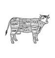 meat diagram cow sketch engraving vector image vector image