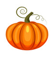 pumpkin holiday halloween character halloween vector image vector image