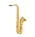 saxophone jazz musical instrument vector image vector image