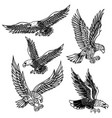 set of eagles design element for logo label vector image