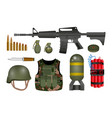 set realistic hand grenade or military vector image