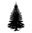 silhouette monochrome big forest tree vector image vector image