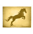 Ink Splashes Horse At Vintage Paper vector image