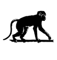 Monkey Black silhouette on white background vector image