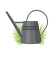 a metal watering can vector image vector image