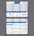design triple brochure with blue elements vector image vector image