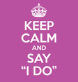 keep calm and say i do poster quote vector image