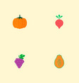 set of vitamin icons flat style symbols with vector image vector image