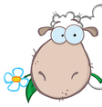 Sheep Eating A Flower vector image vector image