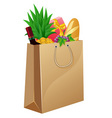 shopping bag with foods vector image