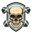 sport emblem with skull and crossed barbells vector image vector image