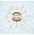 Winter sale background with snowflake Christmas vector image vector image