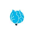 cauliflower icon colored symbol premium quality vector image vector image