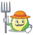 farmer cauliflower character cartoon style vector image