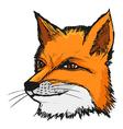 fly fox vector image