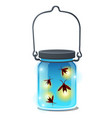 glass transparent jar with glowing insects vector image