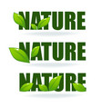 nature tag templates collection leaf labels vector image vector image