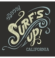 Surfs Up hand-lettering tee vector image