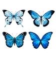 Watercolor butterflies vector image