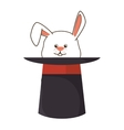 Wizard hat with rabbit isolated icon vector image