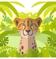 cheetah on jungle background vector image vector image