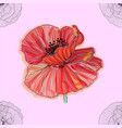 floral background with poppies seamless pattern vector image vector image