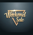 weekend sale lettering with gold glitter effect vector image vector image