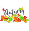 autumn horizontal banner with leaves vector image vector image