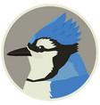 blue jay bird wildlife animals round frame vector image vector image