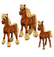 cartoon horses on white background vector image