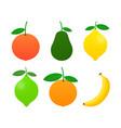 fresh citrus fruits set orange grapefruit lemon vector image