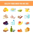 Healthy Food Icon Flat vector image