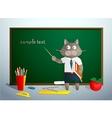 Cartoon cat in school vector image