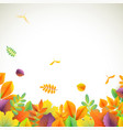 background for autumn season with vector image vector image