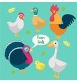 cartoon funny birds farm vector image vector image