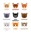 cute cat icons set vi vector image vector image