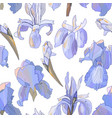 romantic floral seamless pattern with irises vector image