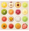 set fruit halves icons vector image vector image
