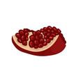 small slice of ripe pomegranate delicious fruit vector image vector image
