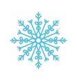 snowflake winter snow vector image vector image