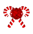 Sweet traditional Christmas candy vector image