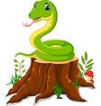 cartoon funny snake on tree stump vector image