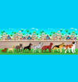 collection of purebred dogs aligned on the town vector image