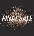 final sale concept with confetti vector image