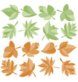 leaves colored vector image vector image
