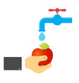 man washes the apple under the tap vector image