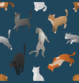seamless pattern of isometric cartoon cats vector image vector image