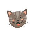 striped gray cat with open mouth whiskers isolated vector image vector image
