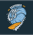 vintage surf print design for t-shirt and other vector image